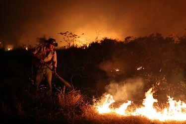 Incendios forestales están dejado irreconocible nuestro mundo