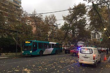 Una de las consecuencias del intenso viento registrado esta tarde: un árbol cayó sobre un bus de Red en el sector oriente. Foto: imagen de Twitter / @delavegacentral